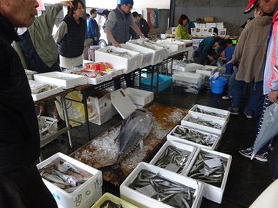 第15回魚祭り